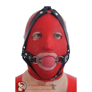 Ballgag head harness