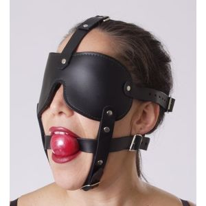 Gag and Blindfold Head Harness