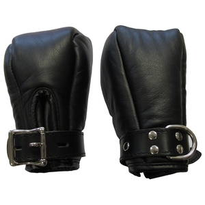 Padded Fist Mitts