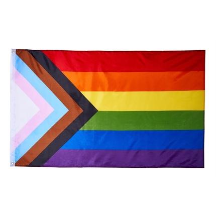 Progress Pride Flagge