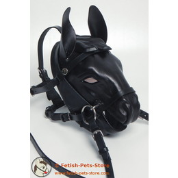 Pony Mask Minishetty