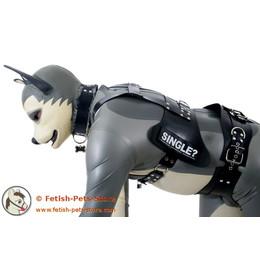 Hundebrustgeschirr mit Klettschild