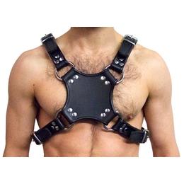 Ausgeh Harness